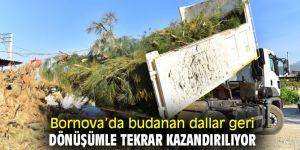 Bornova'da budanan dallar geri dönüşümle tekrar kazandırılıyor