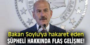 Bakan Soylu'ya hakaret eden şüpheli hakkında flaş gelişme!