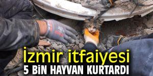 İzmir itfaiyesinden 14 ayda 5 bin hayvan kurtarmaoperasyonu