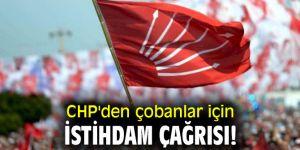 CHP'den çobanlar için istihdam çağrısı!