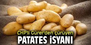 CHP'li Gürer'den çürüyen patates isyanı