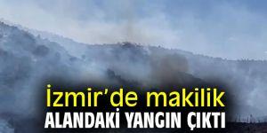 İzmir'de makilik alandaki yangın çıktı