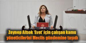 Zeynep Altıok 'Evet' için çalışan kamu yöneticilerini Meclis gündemine taşıdı