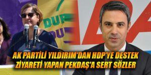 AK Partili Yıldırım'dan HDP'ye destek ziyareti yapan Pekdaş'a sert sözler