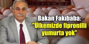 """""""Ülkemizde fipronilli yumurta yok"""""""