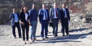 Menderes'te yanan ormanlık alan için İzmir Barosu'ndan kampanya