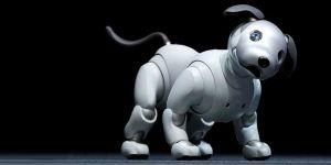 Sony'den yapay zekalı evcil hayvan...