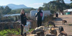 Super Girls Maraton ekibi, 5 ton mama topladı
