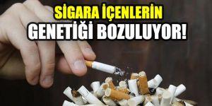 Sigara içenlerin genetiği bozuluyor!