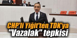 "CHP'li Yiğit'ten TDK'ya ""Vazalak"" tepkisi"