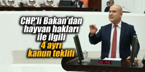 CHP'li Bakan'dan hayvan haklarıyla ilgili 4 ayrı kanun teklifi