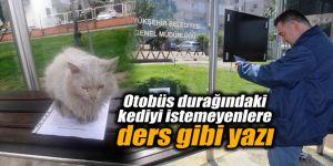 Otobüs durağındaki kediyi istemeyenlere ders gibi yazı
