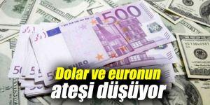 Dolar ve euronun ateşi düşüyor
