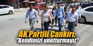 """AK Partili Çankırı: """"Kendimizi unutturmayız"""""""