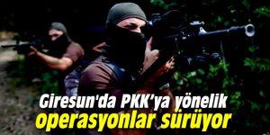 Giresun'da PKK'ya yönelik operasyonlar sürüyor