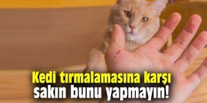 Kedi tırmalamasına karşı sakın bunu yapmayın!